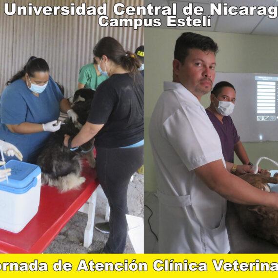 Jornada de Atención Clinica Veterinaria