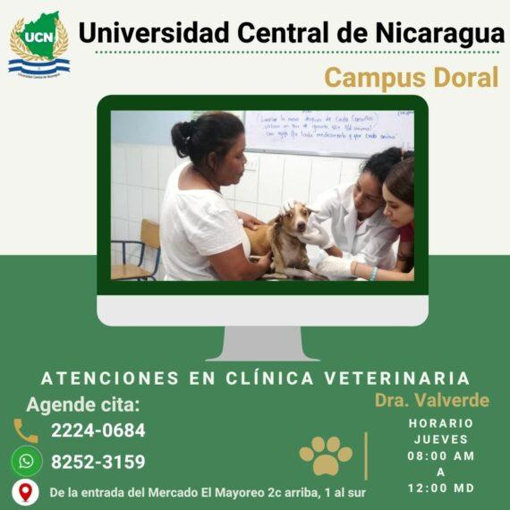 Atenciones en Clínica veterinaria